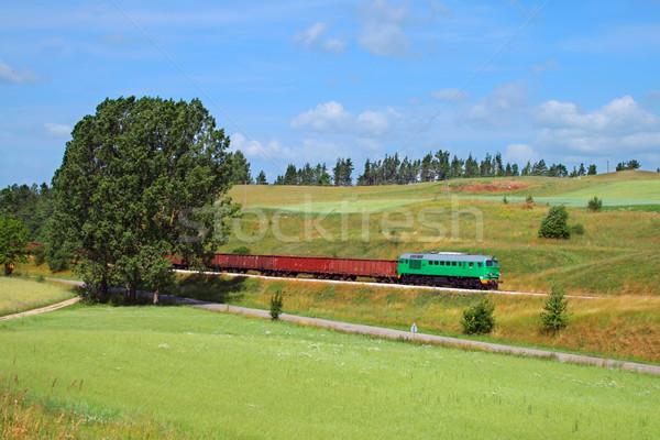 лет пейзаж поезд сельский дизельный локомотив Сток-фото © remik44992