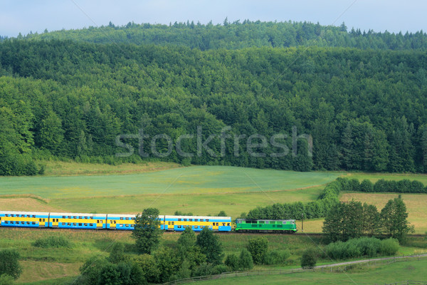 landscape with a railway line, train, hills and forest Stock photo © remik44992