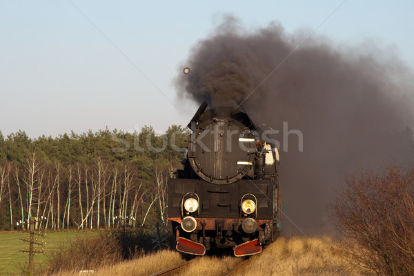Foto stock: Velho · retro · vapor · trem · vintage · fumar