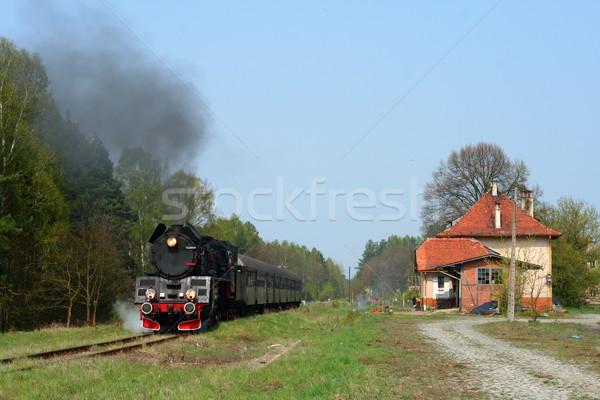 сцена железнодорожная станция пар поезд небольшой станция Сток-фото © remik44992