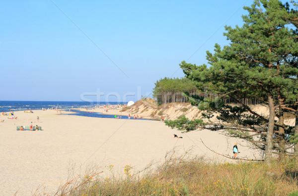 Landschap strand rivier oceaan gras zomer Stockfoto © remik44992
