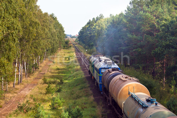 Freight diesel train Stock photo © remik44992