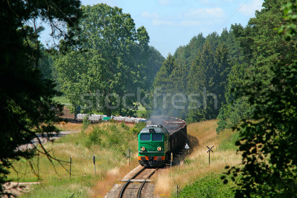 Freight train entering the forest Stock photo © remik44992