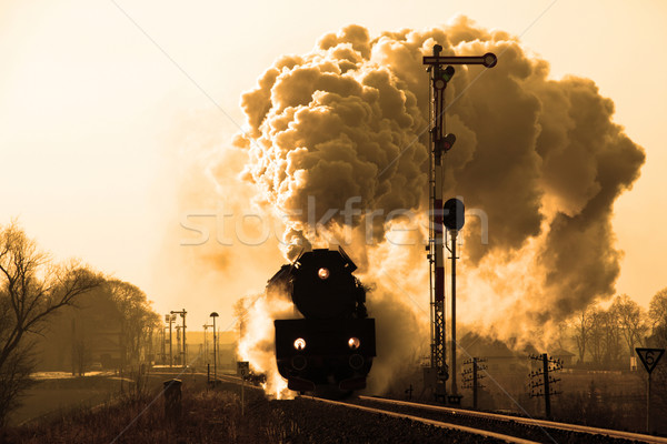 Velho retro vapor trem vintage estação Foto stock © remik44992