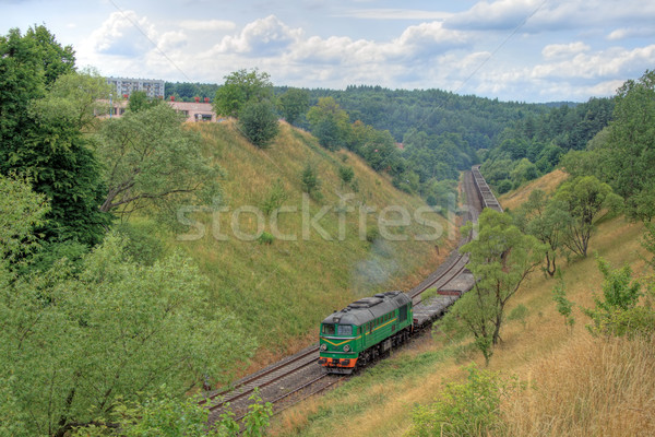 Diesel train locomotive printemps forêt paysage Photo stock © remik44992