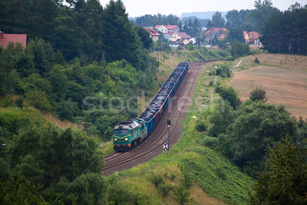 Diesel trein natuur bos fotografie vracht Stockfoto © remik44992