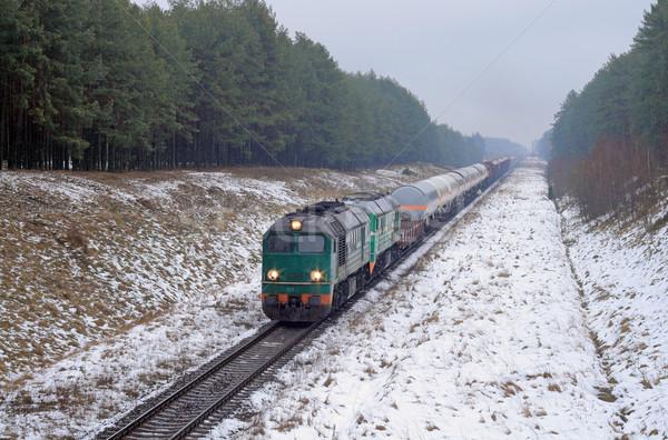 Diesel trein bos winter koud weer Stockfoto © remik44992