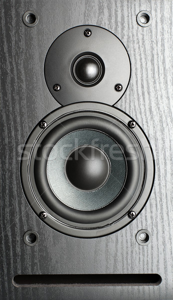 speakers Stock photo © restyler