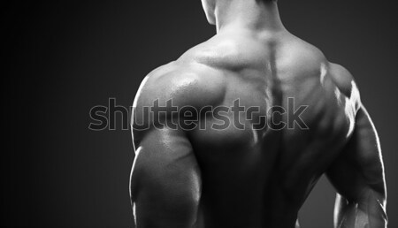 Modelo masculino de volta musculação bíceps músculos Foto stock © restyler