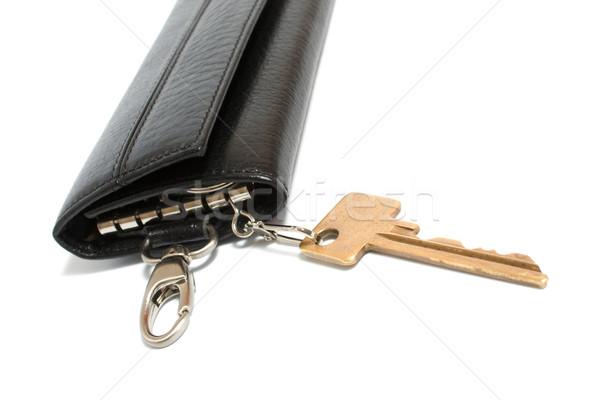 Especial bolsa teclas preto isolado branco Foto stock © restyler