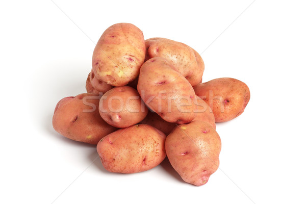 french red potatoes isolated Stock photo © restyler