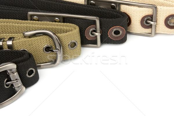 Fibbia cintura abstract gruppo nero bianco Foto d'archivio © restyler