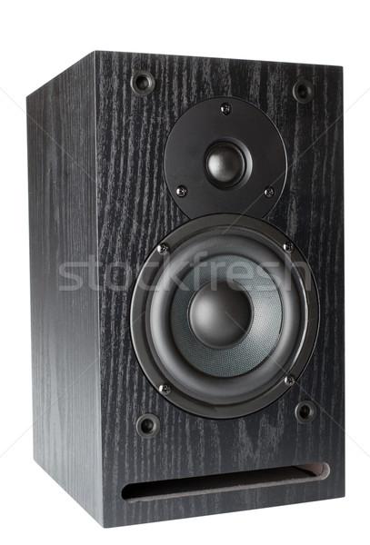 Hoparlörler pasif radyatör yalıtılmış beyaz müzik Stok fotoğraf © restyler