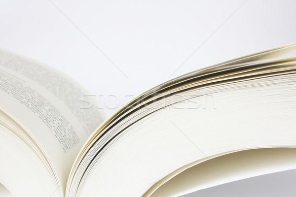open book Stock photo © restyler