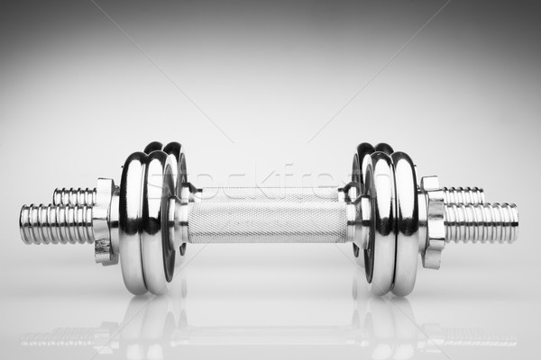 Ijzer grijs reflectie lichaam fitness Stockfoto © restyler