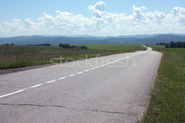 Road waves Stock photo © restyler