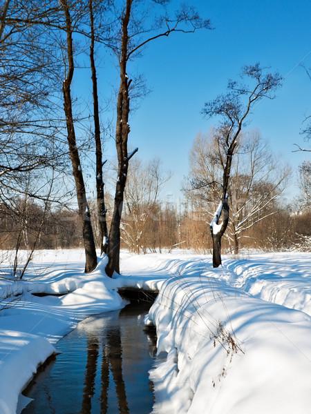 Primavera stream ghiaccio superficie parco Foto d'archivio © reticent
