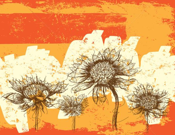 Полевые цветы аннотация рисунок эскиз Blossom иллюстрация Сток-фото © retrostar