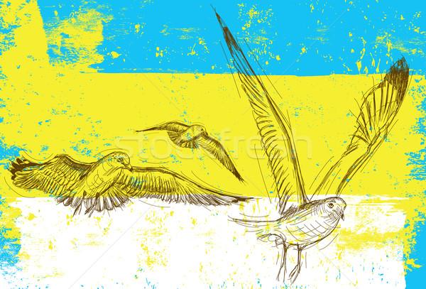 Martı çizimler soyut martılar uçan Stok fotoğraf © retrostar