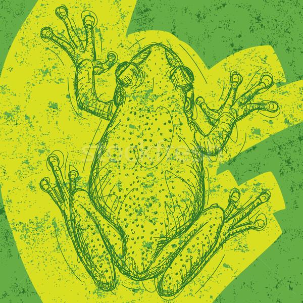 лягушка рисунок аннотация отдельный животного Сток-фото © retrostar