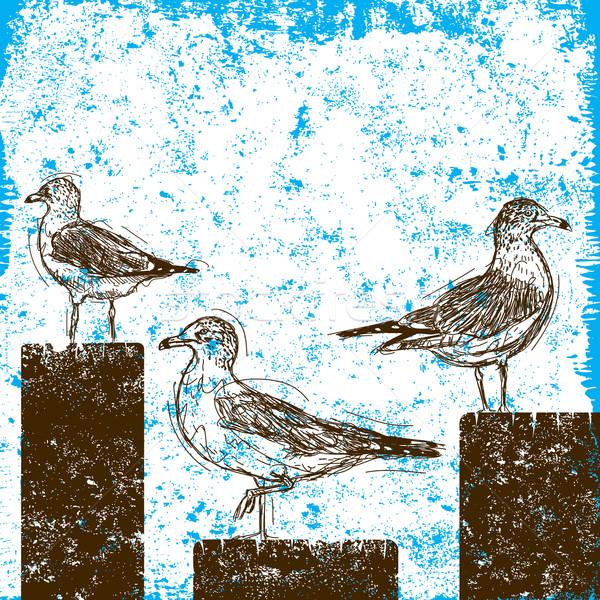 Seagulls on pilings Stock photo © retrostar