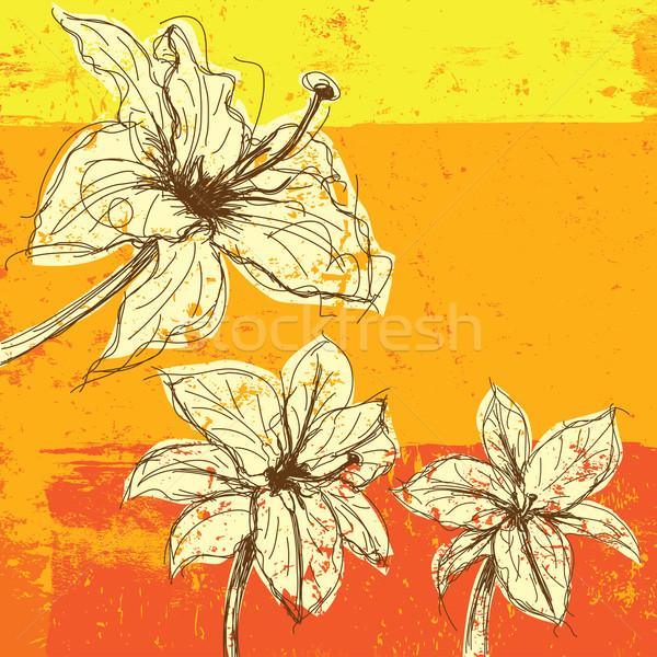 Lírio flor planta desenho desenho animado esboço Foto stock © retrostar