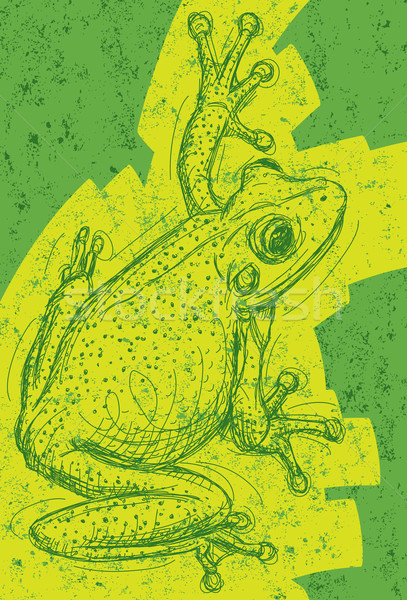 Frog Drawing Stock photo © retrostar