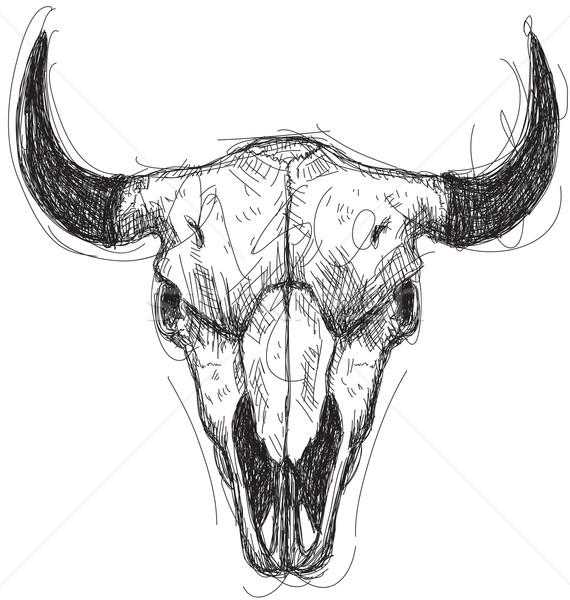 Krowy czaszki szkic sztuki śmierci rysunek Zdjęcia stock © retrostar