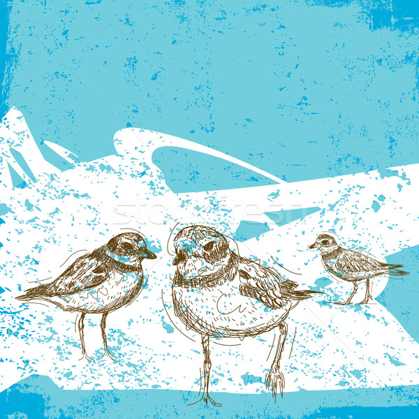 Résumé plage oiseau dessin croquis Photo stock © retrostar