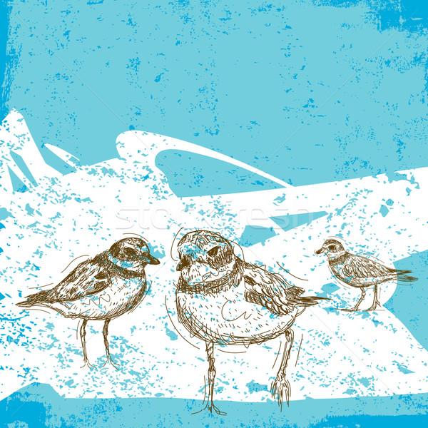Abstrato praia pássaro desenho esboço Foto stock © retrostar