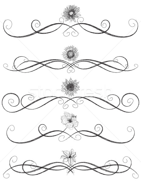 Sketchy flower page rules Stock photo © retrostar