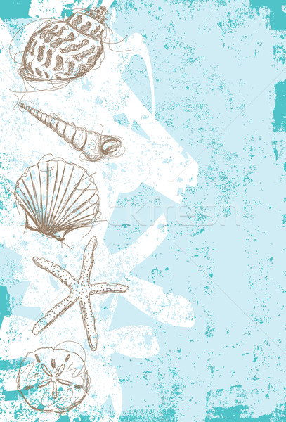 морем оболочки аннотация ракушки рисунок Сток-фото © retrostar
