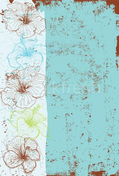 Ebegümeci çiçekler soyut kroki örnek Stok fotoğraf © retrostar