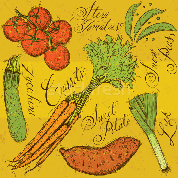 Hortalizas mixto caligrafía tallo tomates zanahorias Foto stock © retrostar