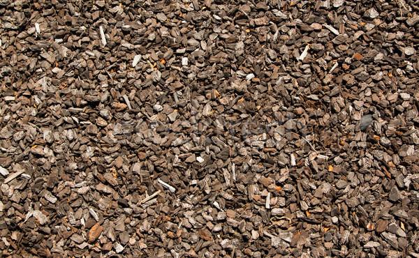 Schors clip textuur groot natuur chip Stockfoto © rghenry