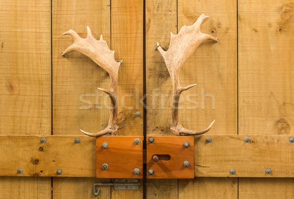 Gewei deur houten schuur herten textuur Stockfoto © rghenry
