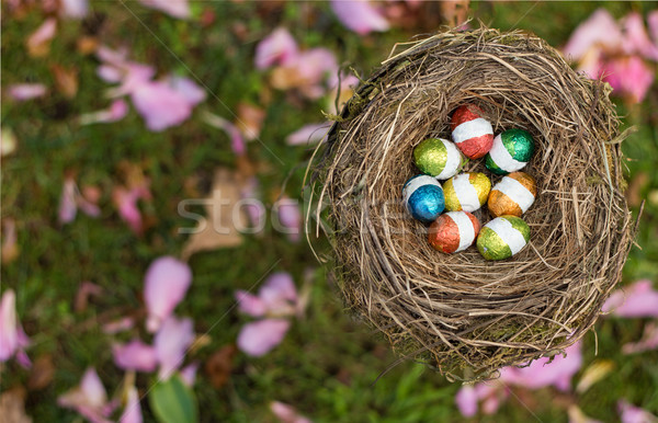 Colors Egg Nest Stock photo © rghenry