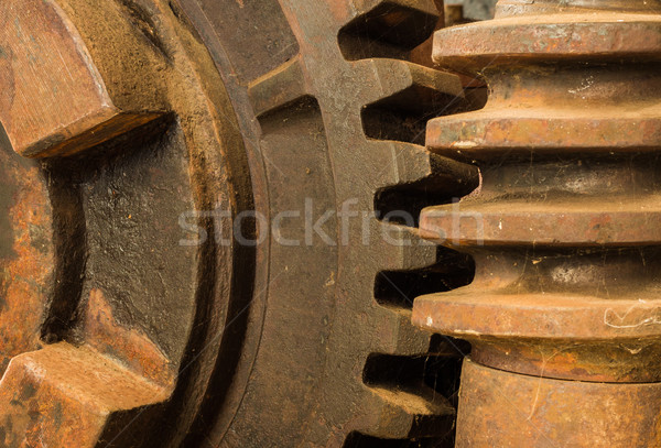 Gear Worm Drive Stock photo © rghenry