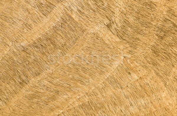 Flax Fiber Texture Stock photo © rghenry