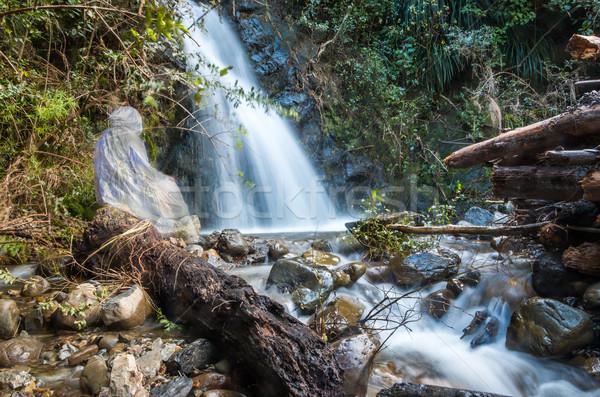 Keresztség vízesés szellem kép Jézus Krisztus Stock fotó © rghenry