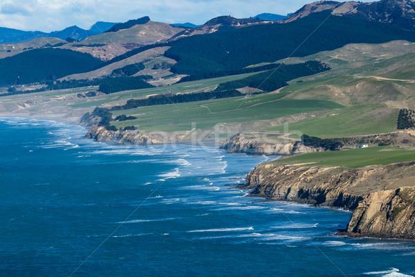 Castlepoint Coastline Stock photo © rghenry
