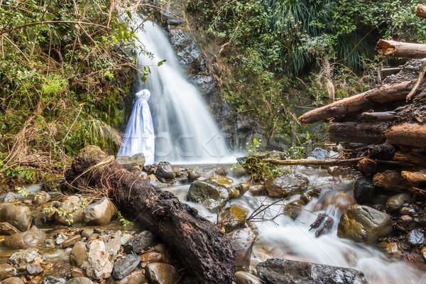 Jesus Waterfall Stock photo © rghenry