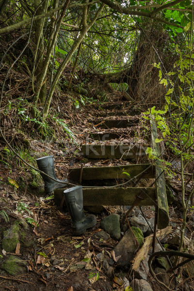Stock photo: Old Bush Steps