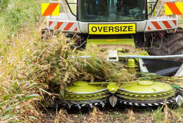 Movimento raccolta labirinto macchina agricoltura Foto d'archivio © rghenry