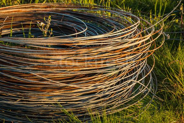 Ogrodzenie drutu toczyć standard rdzy Zdjęcia stock © rghenry