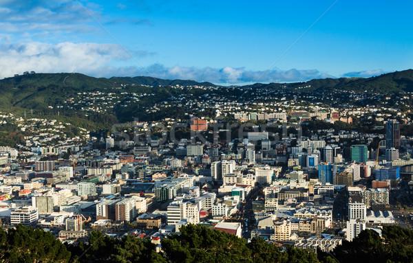 Cidade Wellington olhando para baixo Nova Zelândia Foto stock © rghenry