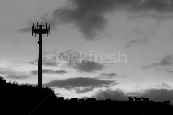 Cell Phone Tower Stock photo © rghenry