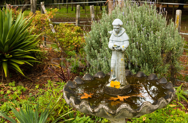 Monnik vogel bad oude standbeeld Stockfoto © rghenry