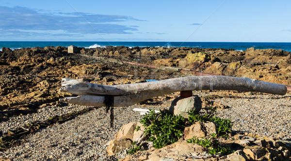 Beach Art Stock photo © rghenry