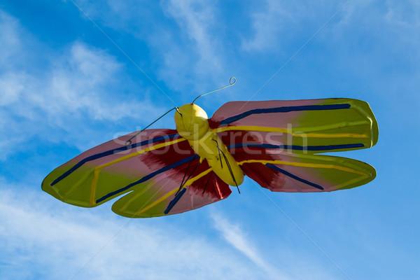 Gigante farfalla meraviglioso colorato volo Foto d'archivio © rghenry